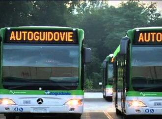 Autoguidovie: bus elettrici per città più verdi